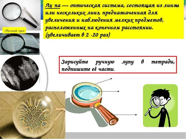 Обычная лупа Лу́па — оптическая система, состоящая из линзы или нескольких ли...