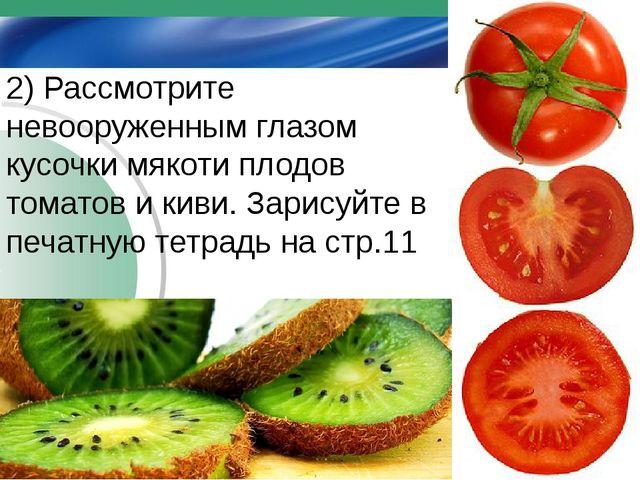 2) Рассмотрите невооруженным глазом кусочки мякоти плодов томатов и киви. За...