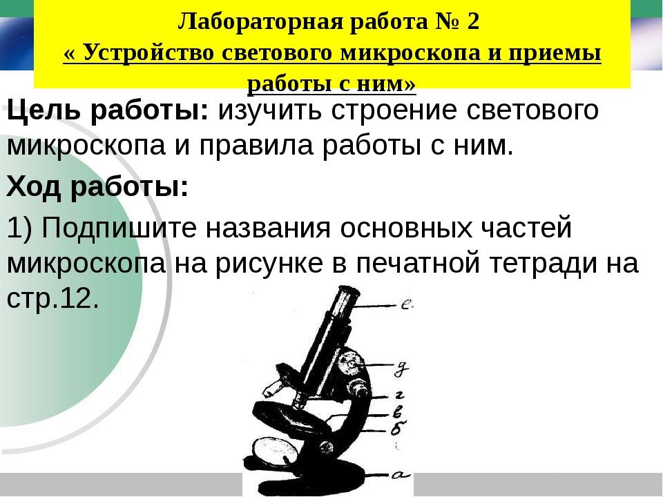 Лабораторная работа № 2 « Устройство светового микроскопа и приемы работы с н...