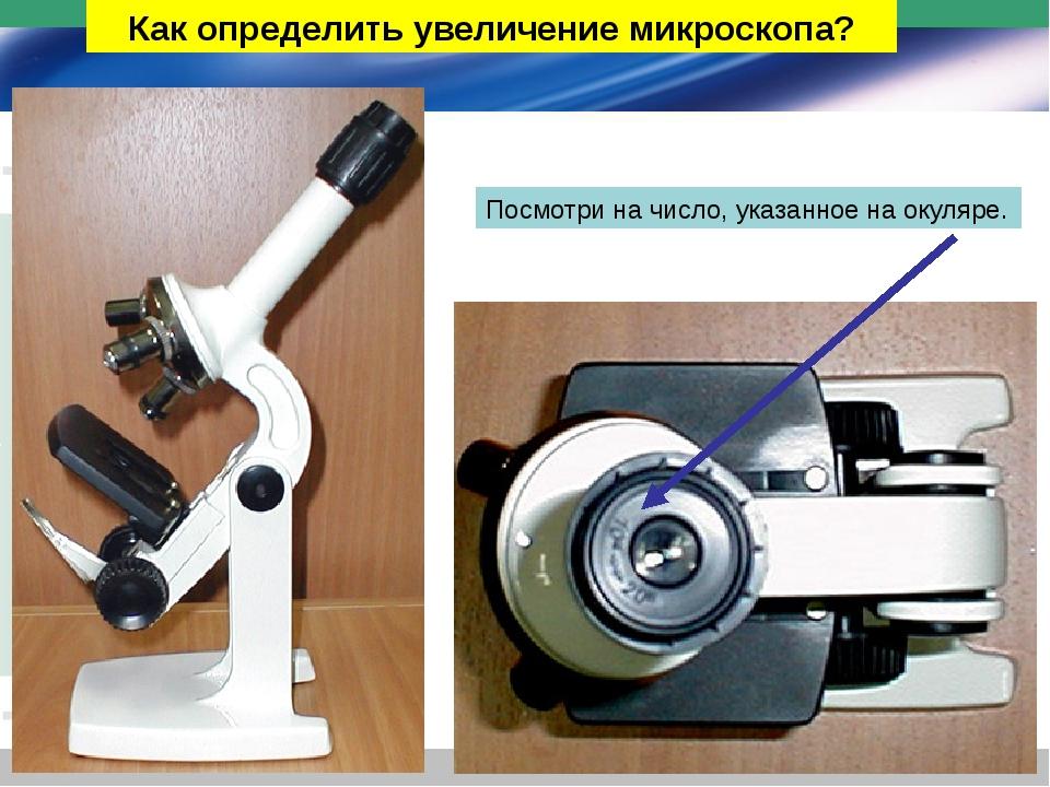 Устройство светового микроскопа