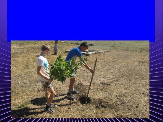 Чтоб школу нам озеленить, Нужно деревья посадить. А мы работы не боимся, Раб...
