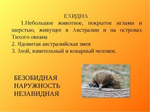 ЕХИДНА 1.Небольшое животное, покрытое иглами и шерстью, живущее в Австралии и