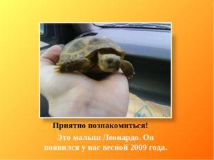 Приятно познакомиться! Это малыш Леонардо. Он появился у нас весной 2009 года.