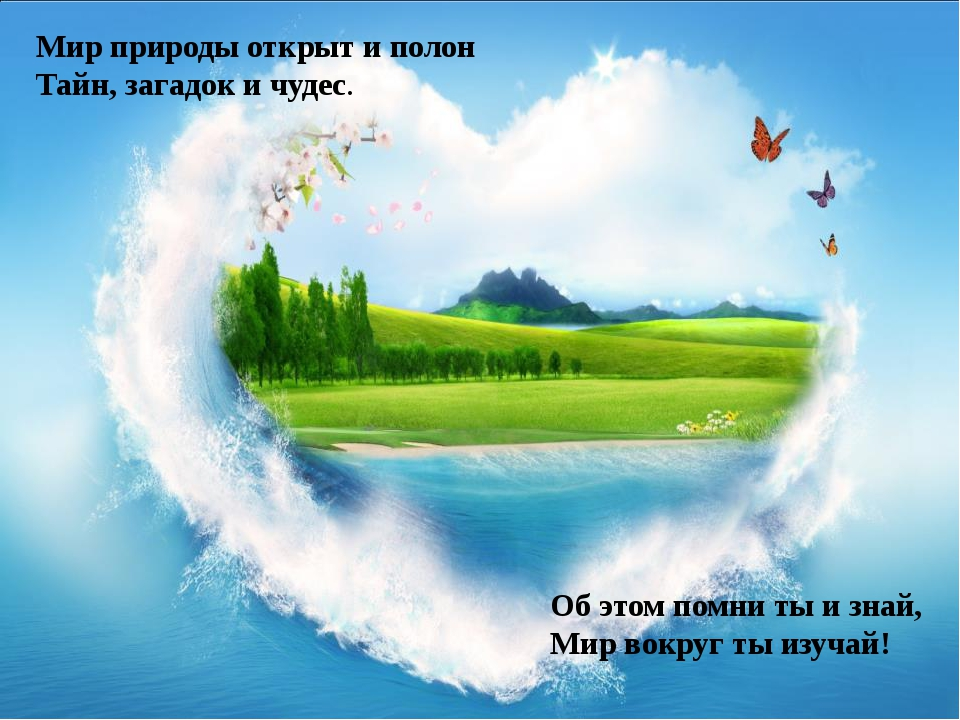 Об этом помни ты и знай, Мир вокруг ты изучай! Мир природы открыт и полон Тай...
