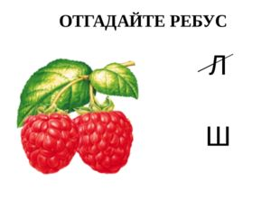 ОТГАДАЙТЕ РЕБУС Л Ш