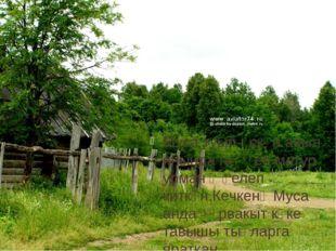 Муса туып-үскән авыл янында гаҗәеп матур урман җәелеп киткән.Кечкенә Муса анд