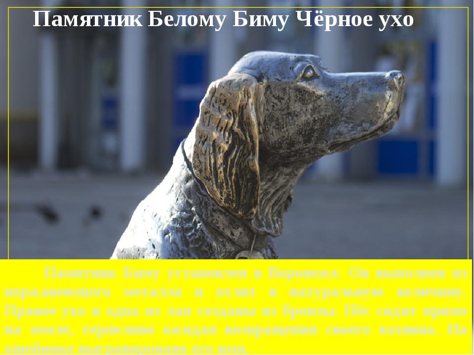 Памятник Белому Биму Чёрное ухо Памятник Биму установлен в Воронеже. Он выпол...