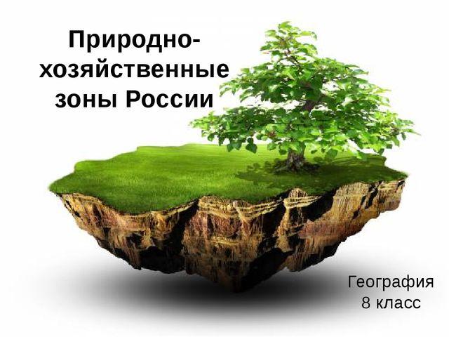 Природно-хозяйственные зоны России География 8 класс