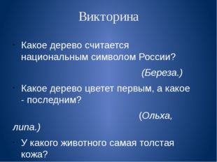 Викторина Какое дерево считается национальным символом России? (Береза.) Како