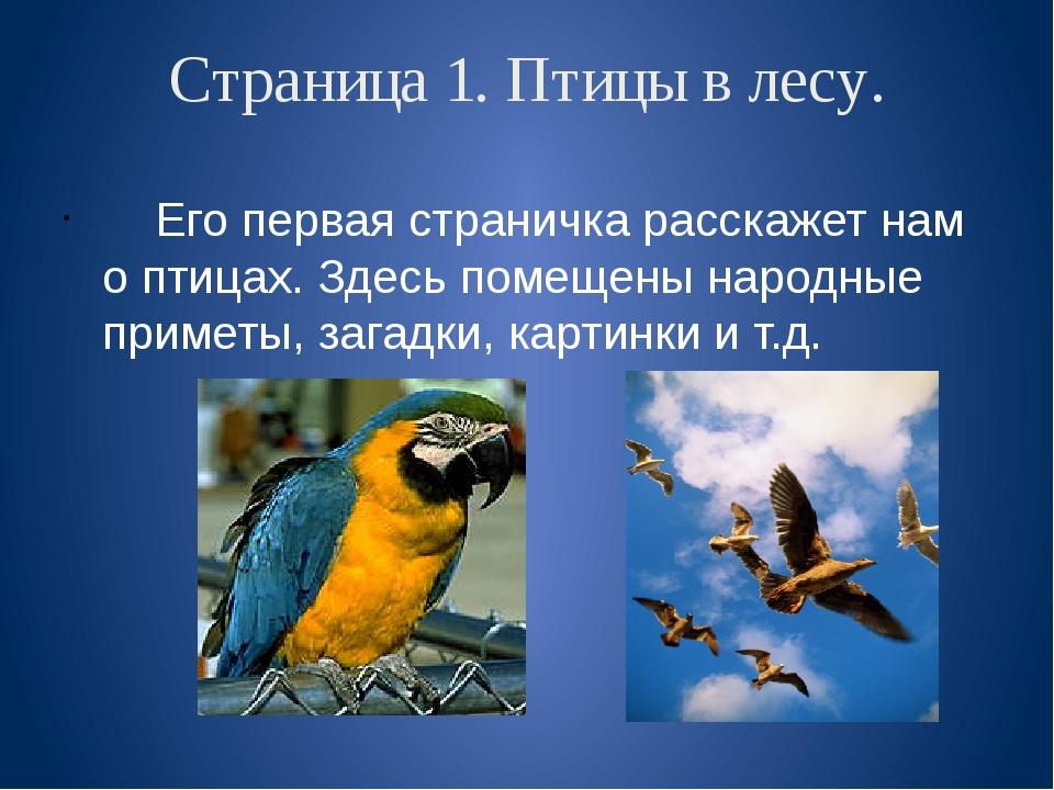 Страница 1. Птицы в лесу. Его первая страничка расскажет нам о птицах. Здесь...