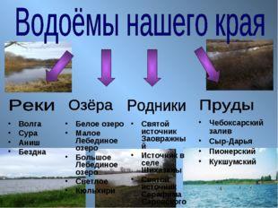 Волга Сура Аниш Бездна Белое озеро Малое Лебединое озеро Большое Лебединое оз