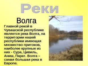 Главной рекой в Чувашской республике является река Волга, на территории нашей