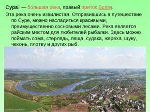 Сура́—большая река, правыйприток Волги. Эта река очень извилистая. Отправи