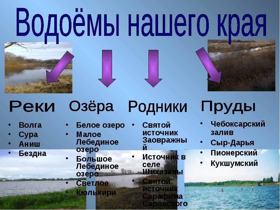 Волга Сура Аниш Бездна Белое озеро Малое Лебединое озеро Большое Лебединое оз...