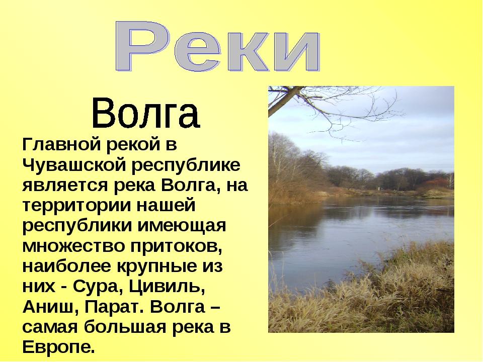 Главной рекой в Чувашской республике является река Волга, на территории нашей...