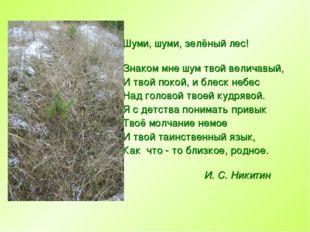 Шуми, шуми, зелёный лес! Знаком мне шум твой величавый, И твой покой, и блес