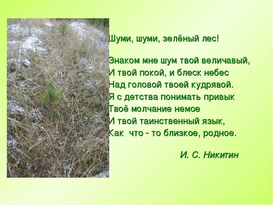Шуми, шуми, зелёный лес! Знаком мне шум твой величавый, И твой покой, и блес...