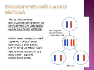 Митоз обеспечивает равномерное распределение наследственного материала между