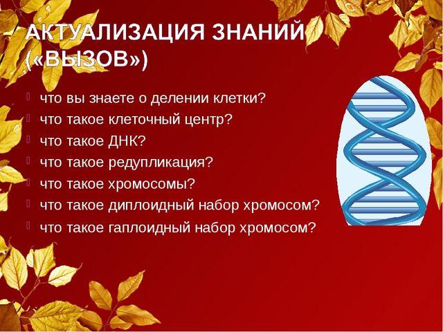 что вы знаете о делении клетки? что такое клеточный центр? что такое ДНК? что...