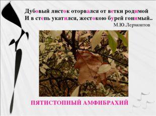 ПЯТИСТОПНЫЙ АМФИБРАХИЙ Дубовый листок оторвался от ветки родимой И в степь у
