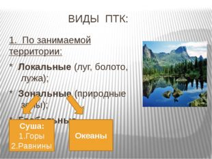 ВИДЫ ПТК: 1. По занимаемой территории: * Локальные (луг, болото, лужа); * Зон
