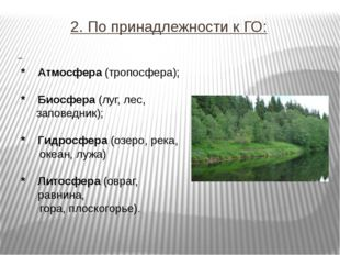 2. По принадлежности к ГО: * Атмосфера (тропосфера); * Биосфера (луг, лес, за