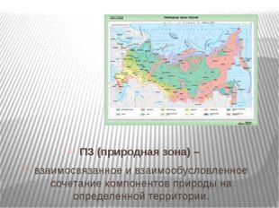ПЗ (природная зона) – взаимосвязанное и взаимообусловленное сочетание компоне