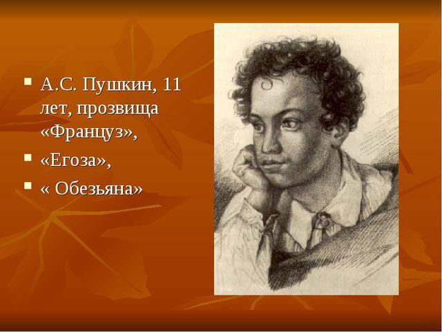 А.С. Пушкин, 11 лет, прозвища «Француз», «Егоза», « Обезьяна»
