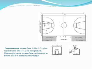 Размеры игровой площадки должны быть 28 метров в длину и 15 метров в ширину,