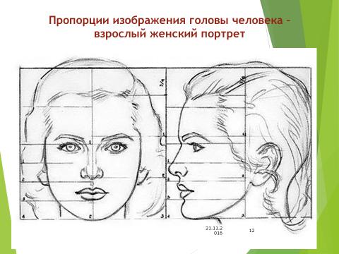 Лицо в фас рисунки