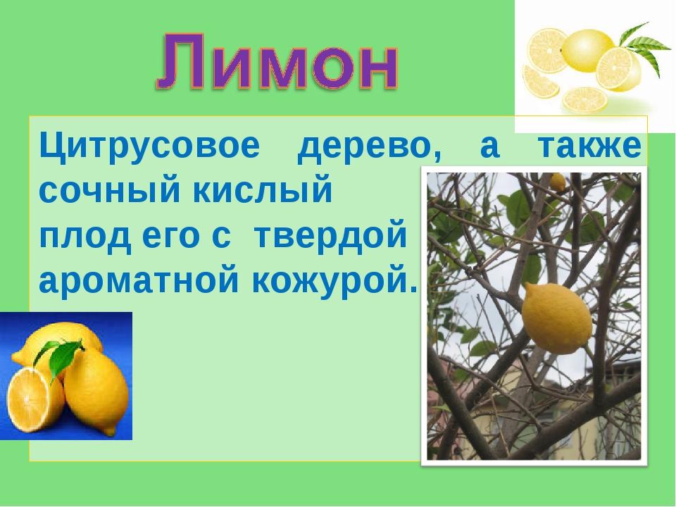 Цитрусовое дерево, а также сочный кислый плод его с твердой ароматной кожурой...