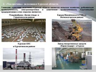 2. «Локомотивы» экономики Курской области. Главными отраслями экономики Курск