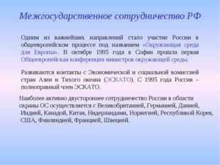 Одним из важнейших направлений стало участие России в общеевропейском процесс