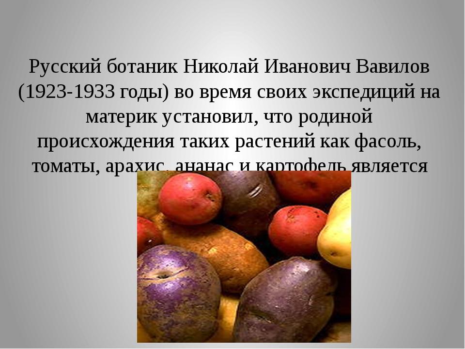 Русский ботаник Николай Иванович Вавилов (1923-1933 годы) во время своих эксп...