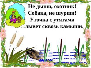Не дыши, охотник! Собака, не шурши! Уточка с утятами Плывет сквозь камыши.
