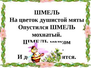 ШМЕЛЬ На цветок душистой мяты Опустился ШМЕЛЬ мохнатый. ШМЕЛЬ медком заправит