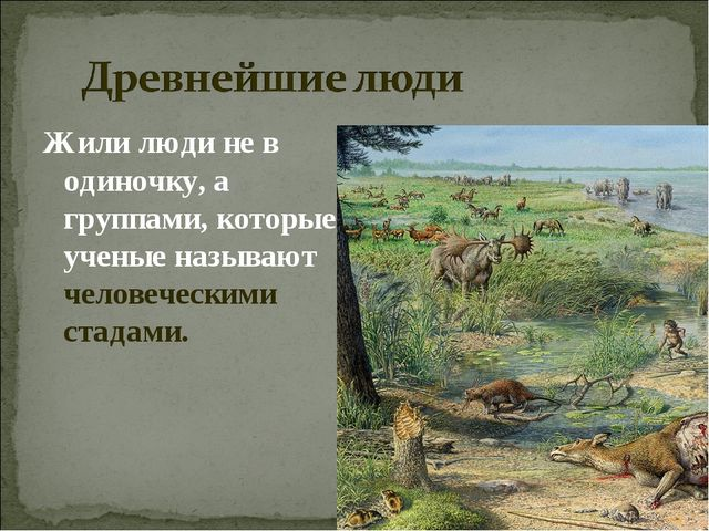 Жили люди не в одиночку, а группами, которые ученые называют человеческими ст...