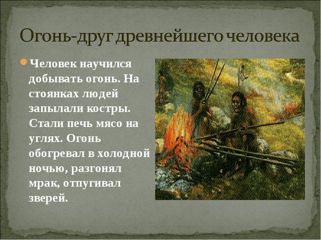Человек научился добывать огонь. На стоянках людей запылали костры. Стали печ...