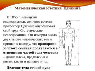 Математическая эстетика Цейзинга В 1855г. немецкий исследователь золотого се
