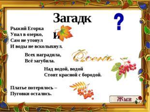 Загадки: Рыжий Егорка Упал в озерко, Сам не утонул И воды не всколыхнул. Всех