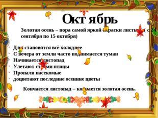 Октябрь Золотая осень – пора самой яркой окраски листьев. ( с 24 сентября по