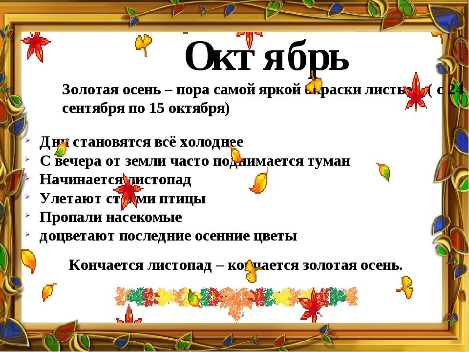 Октябрь Золотая осень – пора самой яркой окраски листьев. ( с 24 сентября по...
