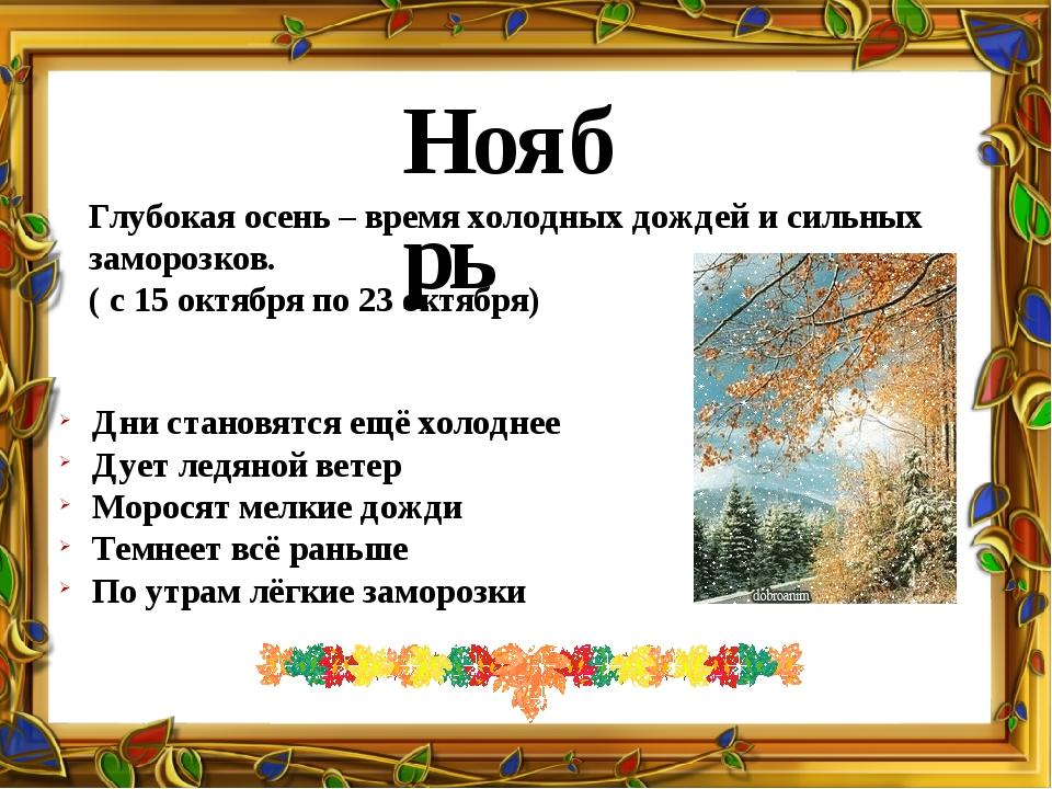 Ноябрь Глубокая осень – время холодных дождей и сильных заморозков. ( с 15 ок...