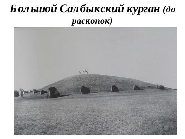 Большой Салбыкский курган (до раскопок)