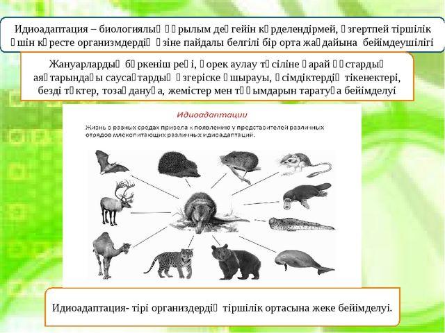 Идиоадаптация – биологиялық құрылым деңгейін күрделендірмей, өзгертпей тіршіл...