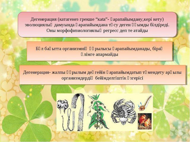 """Дегенерация (катагенез грекше """"каtа""""- қарапайымдану,кері кету) эволюциялық да..."""
