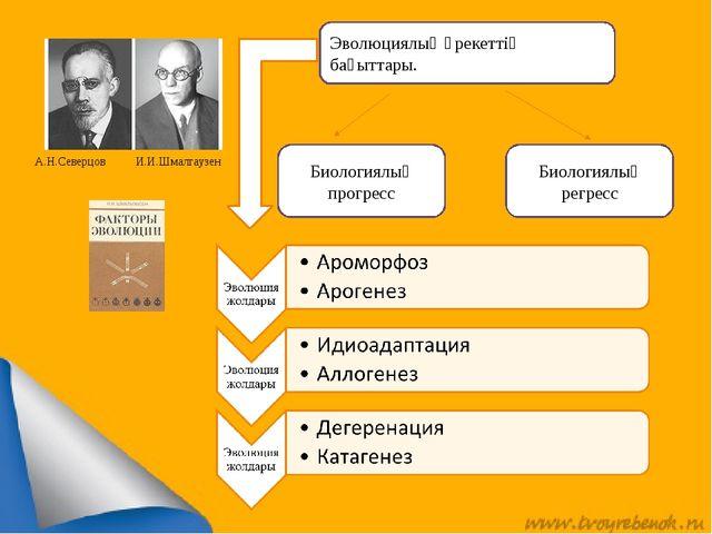 А.Н.Северцов И.И.Шмалгаузен Эволюциялық әрекеттің бағыттары. Биологиялық прог...