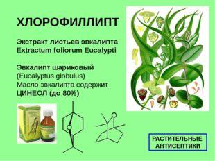 ХЛОРОФИЛЛИПТ Экстракт листьев эвкалипта Extractum foliorum Eucalypti Эвкалипт