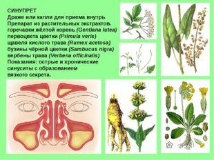 СИНУПРЕТ Драже или капли для приема внутрь Препарат из растительных экстракто