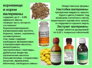 корневище и корни валерианы содержат до 2 – 3,5% эфирного масла, главную част
